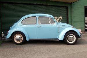 Beetle_01